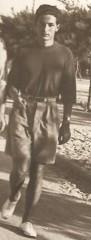 folena_1941.jpg